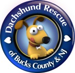 Dachshund Rescue of Bucks County