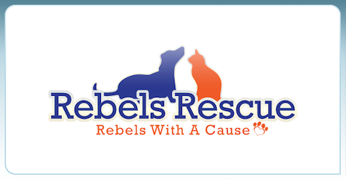Rebels Rescue