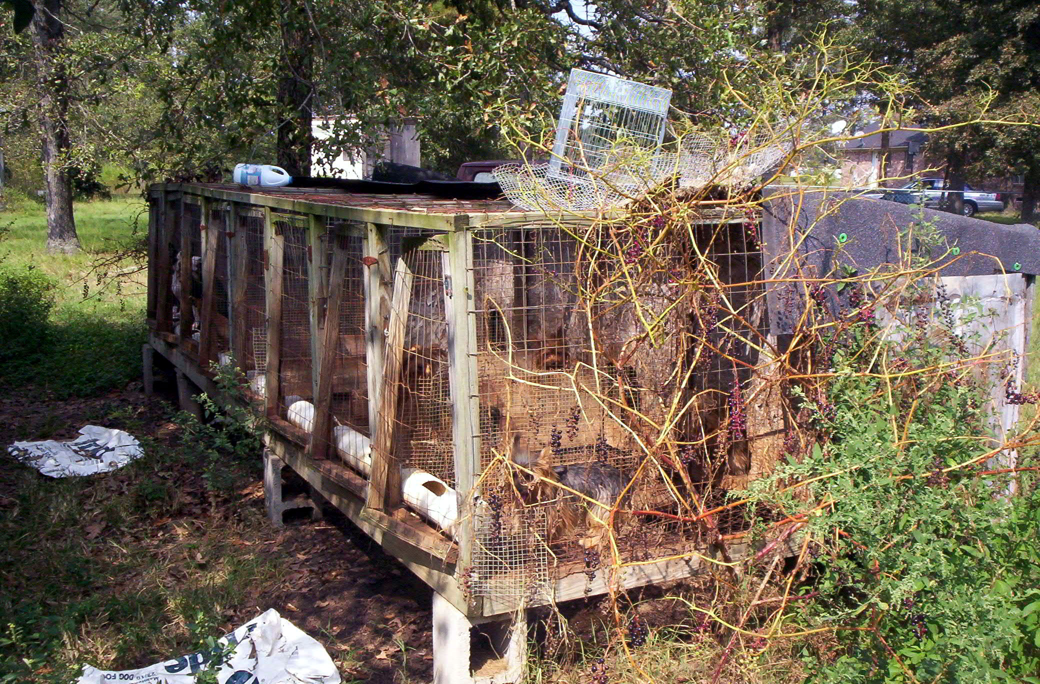 Stop Giving Puppy Mills Advance Notice of Inspections